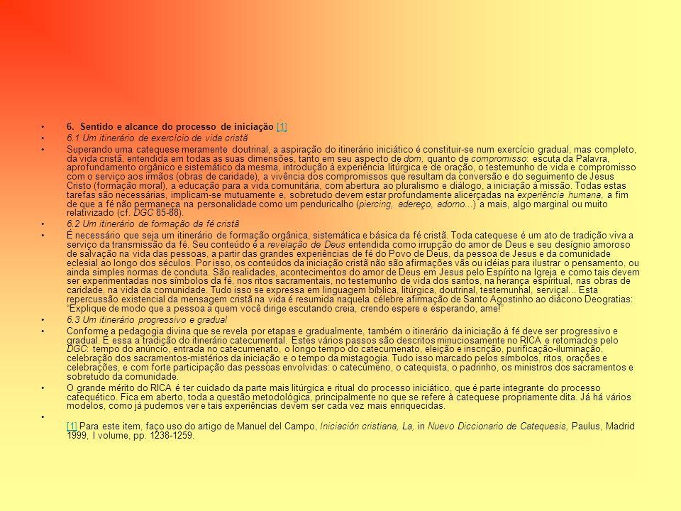 6. Sentido e alcance do processo de iniciação [1]
